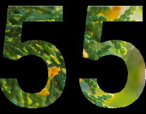 55 ans d'expérience
